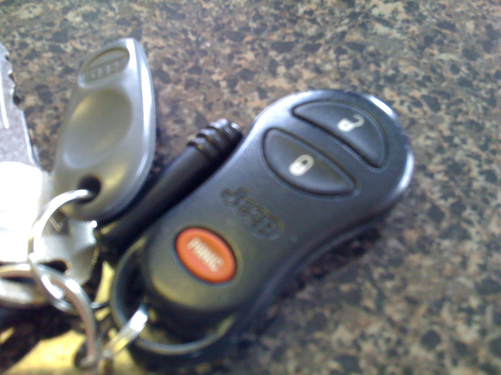 How to Disable Your Car's Panic Button